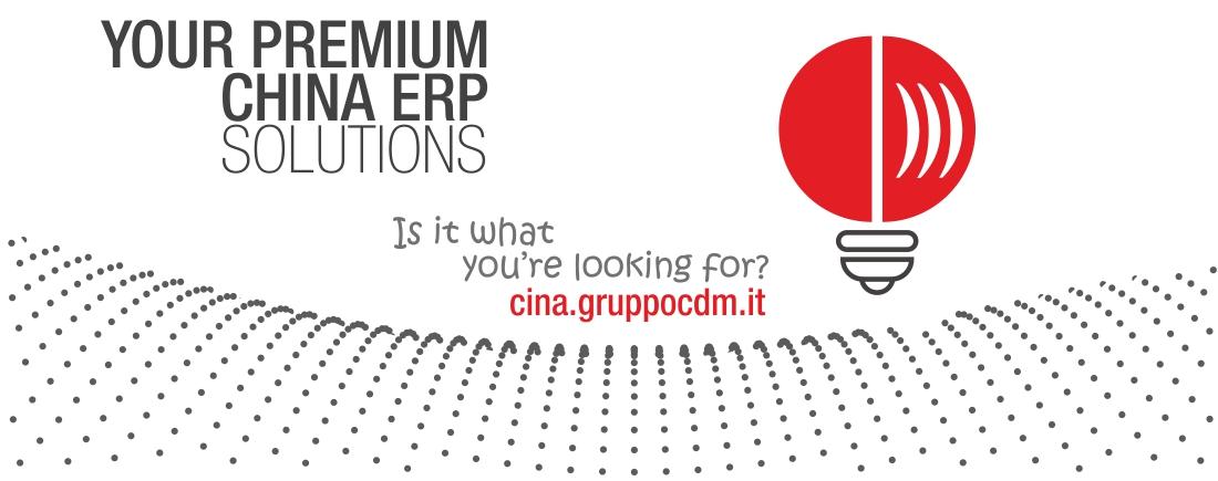 CDM China ERP