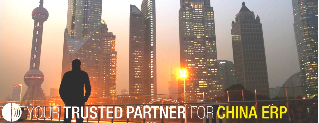CDM Partner for China ERP