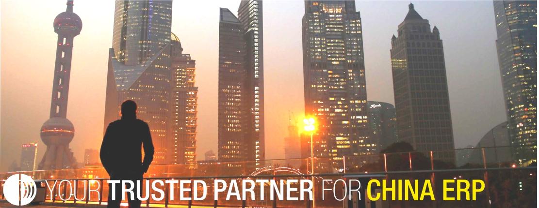 CDM Partner for China ERP